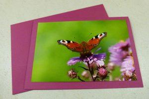 Glückwunschkarte mit Motiv Schmetterling