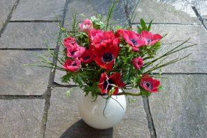 Rote Anemonen in weißer Vase