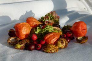 Mit Kastanien, Hagebutten, Lampienblumen und Hortensien herbstlich dekorieren