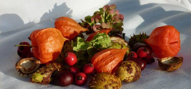 10 Tipps, wie der Herbst für dich noch schöner wird
