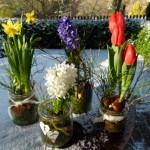 Frühlingsdekoration — neue Ideen zum Selbermachen