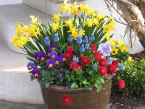 Frühlingsdekoration ganz bunt - wie der Frühling