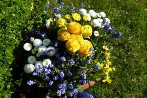 Frühlingsblumenschale in gelb, weiß und blau