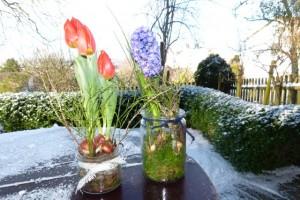 Frühlingsidee für drinnen