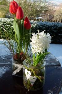 Rote Tulpen und weiße Hyazinthe mit Dekoration im Glas