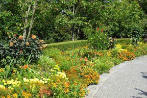 Prächtiges Blumenbeet in gelb und orange Insel Mainau