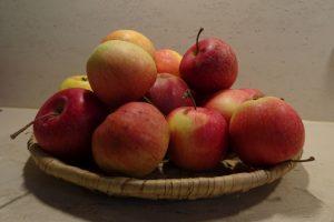 Äpfel für Apfelkompott und Apfelmus