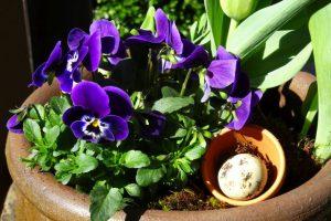 Dekoration Frühling - Frühlingsschale dekoriert it Moos, Tontöpfchen und Wachtelei
