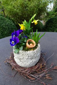 Dekoration Frühling - Kleiner Steintopf bepflanzt mit Frühlingsblühern aus Minitöpfchen