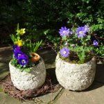 Neue tolle Dekoration Frühling und Ostern