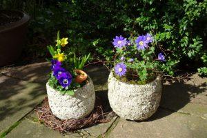 Graue Steintöpfe mit Frühlingsblühern bunt bepflanzt und dekoriert