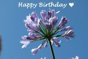 Geburtstagsglückwünsche